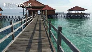Paket Private Tour Murah Derawan 4H3M